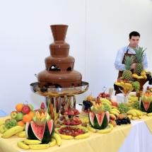 Fantana-de-Ciocolata-2
